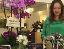 Ioana Molnar, Magnolia: Am...