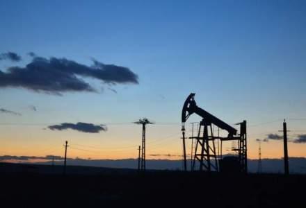 "ROPEPCA: Romania este ""o harta alba"" in privinta prospectarii petroliere"