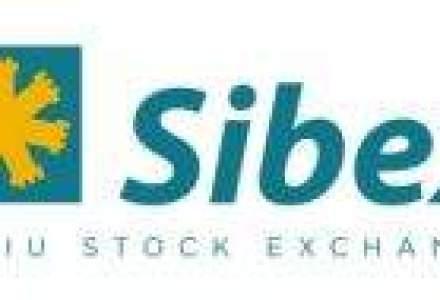 Actionarii Sibex au aprobat schimbarea numelui si au ales un nou CA