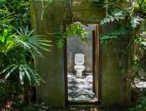 Ai WC-ul in curte? Poti primi...