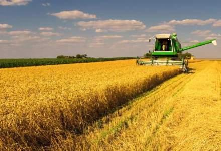 Conditii dure pentru strainii care vor sa cumpere terenuri agricole in Romania