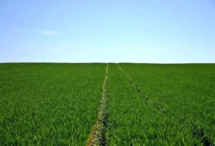 Terenuri agricole: Termenul de minimum 10 ani pentru contractele de arenda a fost eliminat la cererile de finantare