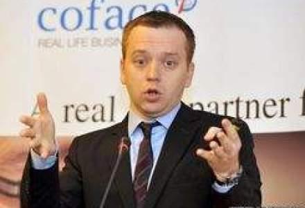 Ionescu, Coface: Urmeaza falimente rasunatoare in 2011