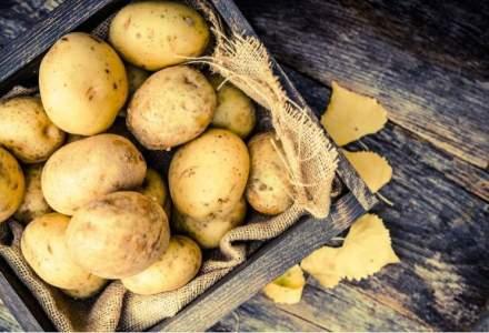 Asociatie fermieri: Desi producatorii vand cartofii noi romanesti cu 1,8 lei, acestia ajung la raft sa coste si 7 lei/kg