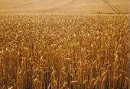 Agrostar ameninta cu protestul in Bucuresti a 2.000 de fermieri