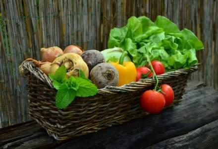 Subventiile fermierilor ar putea ajunge la 106 milioane de euro pentru culturile vegetale
