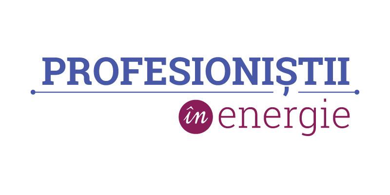Conferinta Profesionistii in energie