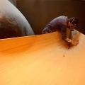 Construirea canotcii - Foto 11 din 14