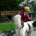 Via Claudia - Vacanta cu bicicletele - Foto 5 din 8