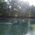 Delta Dunarii - Foto 2 din 7
