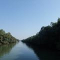 Delta Dunarii - Foto 3 din 7