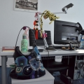 Birourile ePayment - Foto 23 din 26