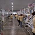 Fabrica Yazaki de la Caracal - Foto 10 din 11