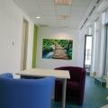 Noul sediu eMag - Foto 4 din 6