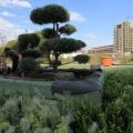 Parcul Palas Iasi - Foto 2 din 4