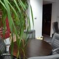Birou de companie Ascendis - Foto 2 din 13