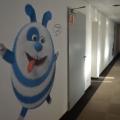 Birourile Domo - Foto 13 din 38