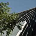 Patriciu are al doilea chirias in birourile de la Romana - Foto 3