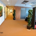 Birou de companie MasterCard - Foto 17 din 18