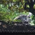"""Shanghai, locul unde zgarie-norii se imbina cu kitschul """"autentic chinezesc""""  REPORTAJ FOTO - Foto 17"""