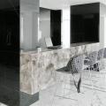Penthouse-ul lui Ion Tiriac - Foto 10 din 35