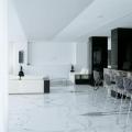 Penthouse-ul lui Ion Tiriac - Foto 26 din 35