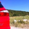 Ford Focus ST - Foto 26 din 26