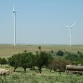 Parcul eolian Salbatica II (judetul Tulcea) - Foto 7 din 7
