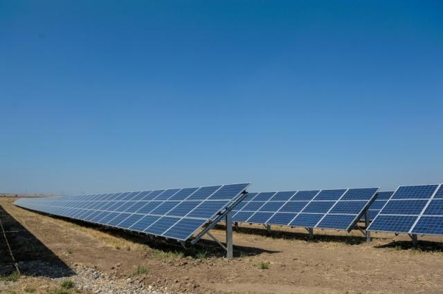 Cum arata parcul fotovoltaic dezvoltat in Vrancea cu know-how danez si portughez (Galerie Foto) - Foto 15 din 28