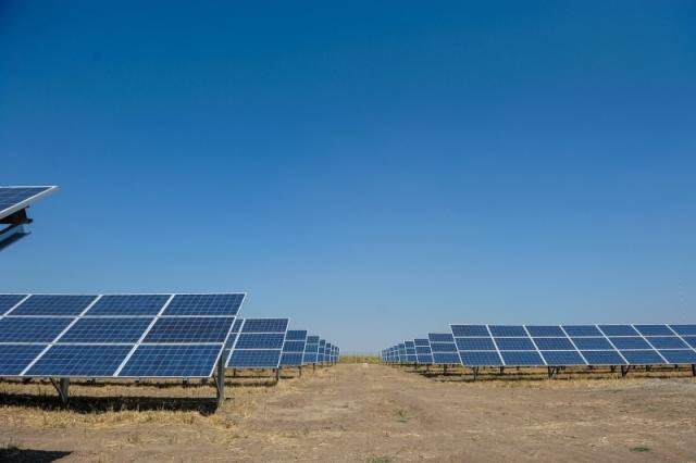 Cum arata parcul fotovoltaic dezvoltat in Vrancea cu know-how danez si portughez (Galerie Foto) - Foto 16 din 28