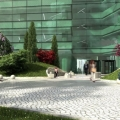 green gate - Foto 3 din 4
