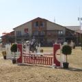 Salonul Calului - Foto 2 din 23