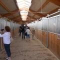 Salonul Calului - Foto 9 din 23