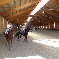 Salonul Calului - Foto 17 din 23
