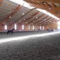 Salonul Calului - Foto 18 din 23