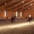Salonul Calului - Foto 19 din 23