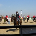 Salonul Calului - Foto 23 din 23