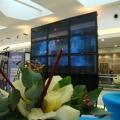 expozitie Cosmos 2012 - Foto 3 din 22