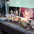 expozitie Cosmos 2012 - Foto 6 din 22
