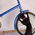 Biciclete - Foto 5 din 5