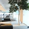 UniCredit Tiriac Bank - Foto 9 din 47