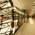 Start-Up Hub Timisoara - Foto 19 din 32