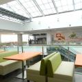 Traieste in Canada, face imobiliare in Botosani: cum arata si pe ce mizeaza un mall aflat in una din cele mai sarace zone UE (FOTO) - Foto 20