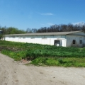 Sucursala Avicola din Mihailesti - Foto 3 din 8