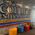 Birou Colliers - Foto 18 din 19
