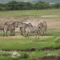 Vacanta in Kenya - Foto 1 din 20