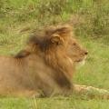 Vacanta in Kenya - Foto 8 din 20