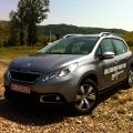 Peugeot 2008 - Foto 11 din 23