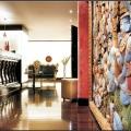 Buddha Bar intra pe piata spa-urilor din Romania, cu francize de 200.000 euro - Foto 2 din 6