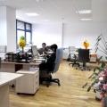 Birou de companie la Lugera - Foto 18 din 33